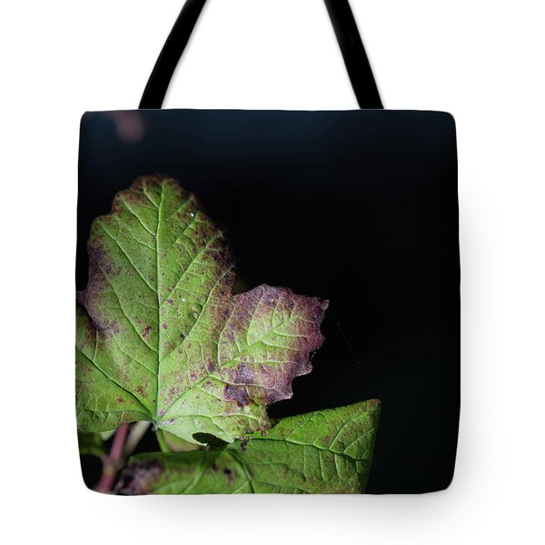 Tote Bag featuring the photograph  Changing Color  by Jingjits Photography