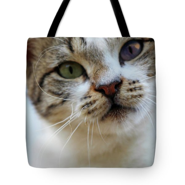 Tote Bag featuring the photograph Changing Colors by Munir Alawi