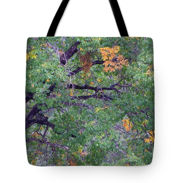 Changing Of The Seasons Tote Bag by Mary Deal