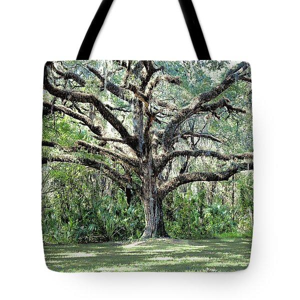 Chaotic Order Tote Bag