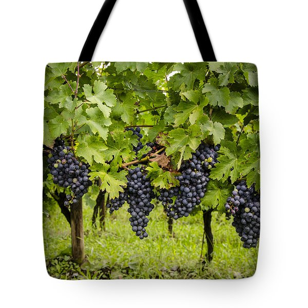 Chardonnay Grape Cluster Tote Bag by Perry Van Munster