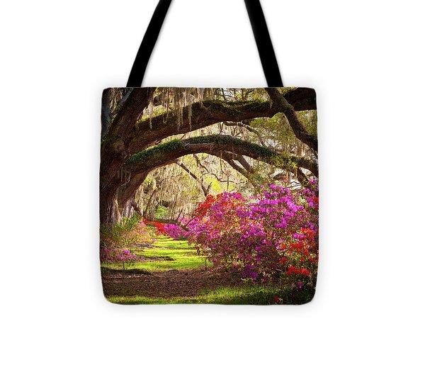 Charleston Sc Magnolia Plantation Gardens - Memory Lane Tote Bag by Dave Allen