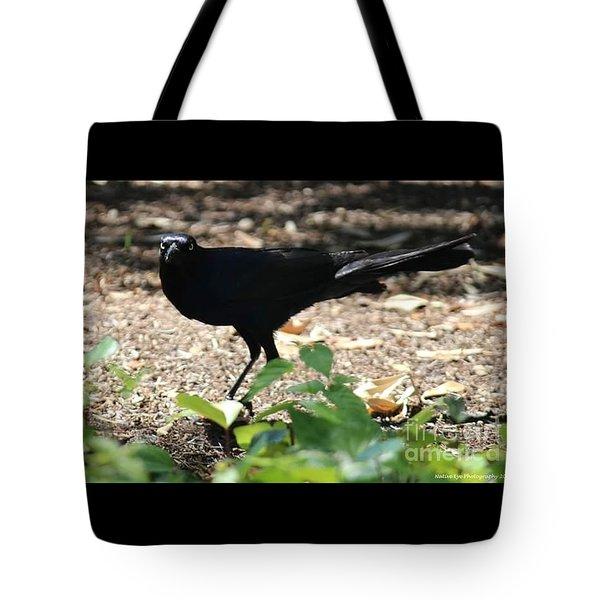 Charleston Wildlife. Black Bird Tote Bag