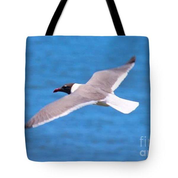 Charleston Wildlife. Seagull Tote Bag