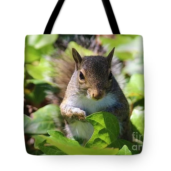 Charleston Wildlife. Squirrel Tote Bag