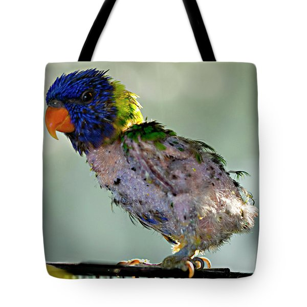 Charlie After A Night Out Tote Bag