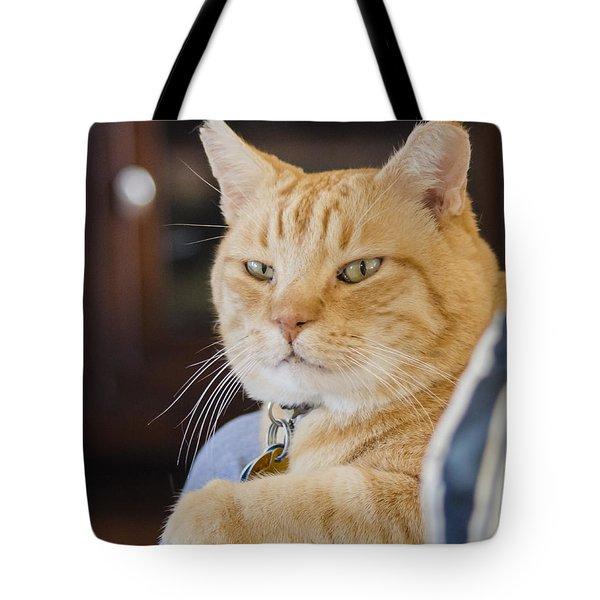 Charlie Cat Tote Bag