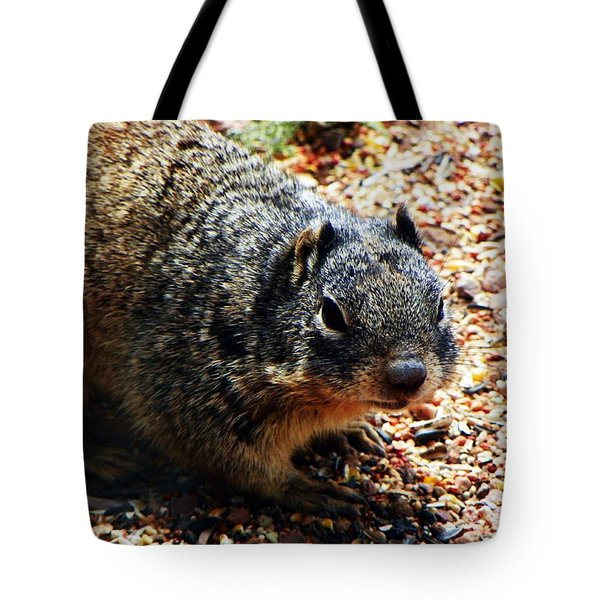 Tote Bag featuring the photograph Charlie by Joseph Frank Baraba