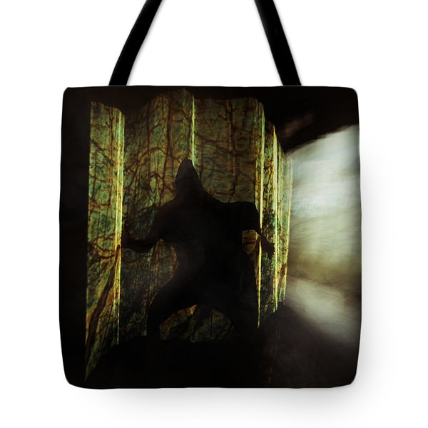 Chasing Shadows Tote Bag