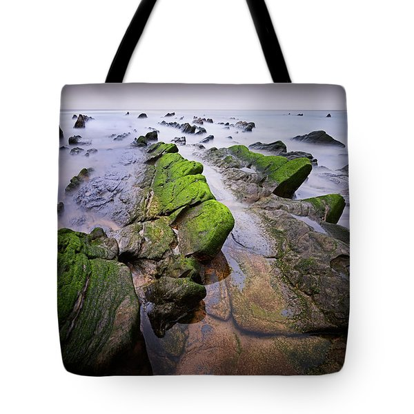 Chasing The Dragons Tote Bag by Dominique Dubied