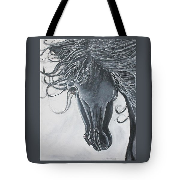 Chasing The Wind Tote Bag