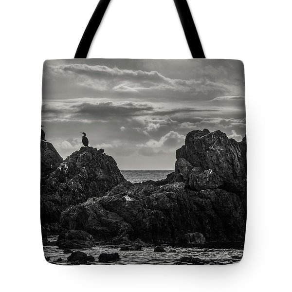 Chatting On Rocks Tote Bag