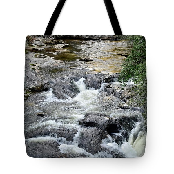 Chattooga River In South Carolina Tote Bag by Bruce Gourley