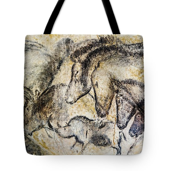 Chauvet Horses Aurochs And Rhinoceros Tote Bag
