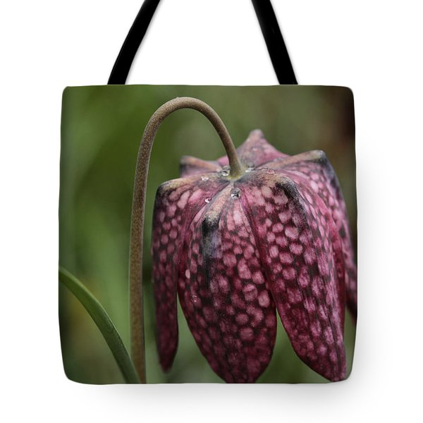 Checkers In The Field Tote Bag