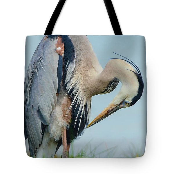 Checking Out The 'do' Tote Bag by Pamela Blizzard