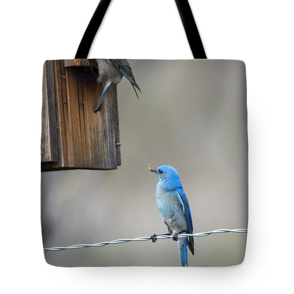 Checking The Nest Tote Bag by Mike Dawson