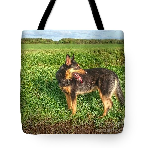 Checking Where We've Been. #dogs  #gsd Tote Bag