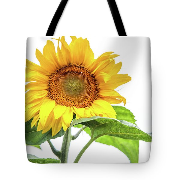Tote Bag featuring the photograph Cheerful Flower Cheerful Mood by Jenny Rainbow