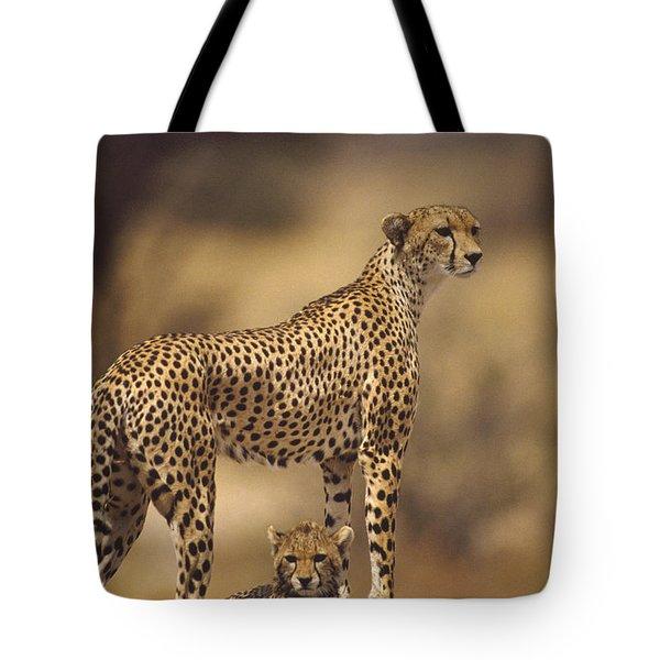 Cheetah Acinonyx Jubatus Mother With Tote Bag by Gerry Ellis
