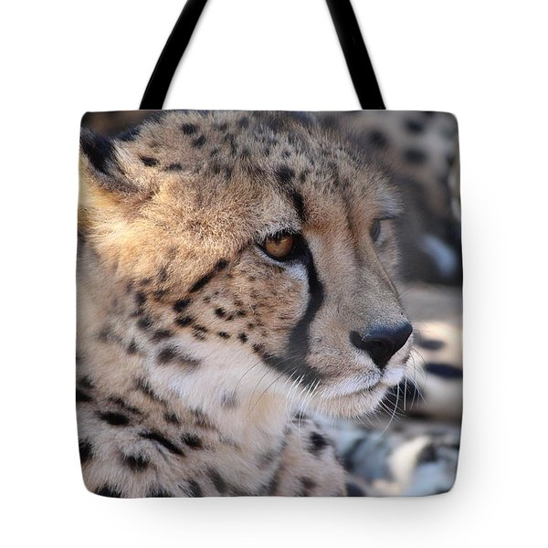 Cheetah And Friends Tote Bag