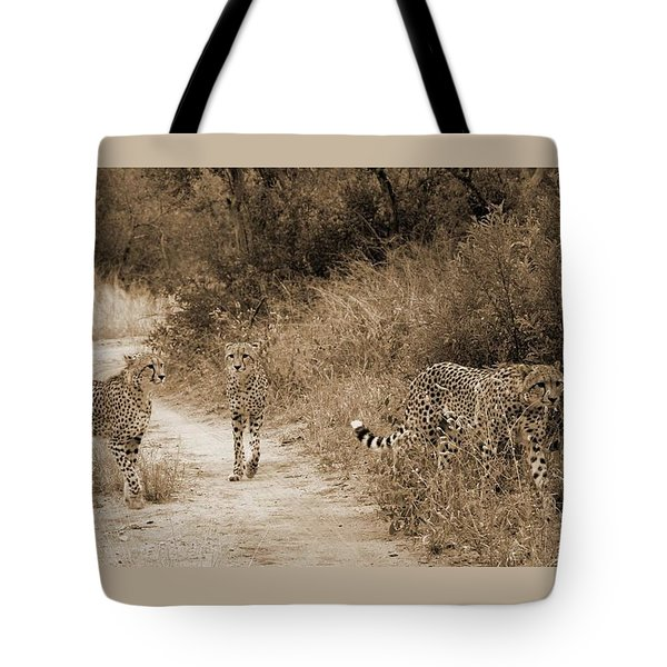 Cheetah Brothers Tote Bag