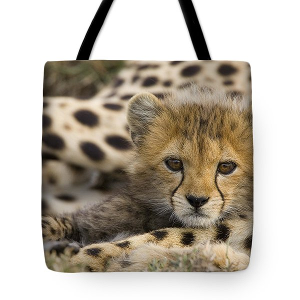 Cheetah Cub Portrait Tote Bag