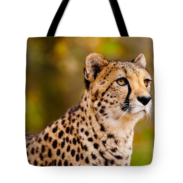 Cheetah In A Forest Tote Bag