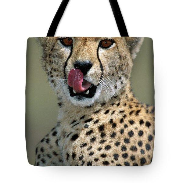 Cheetah Licking  Tote Bag
