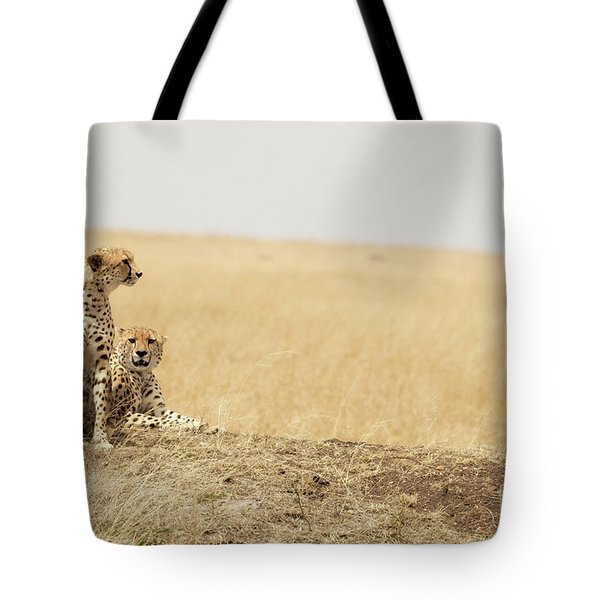Cheetah Pair In The Masai Mara Tote Bag