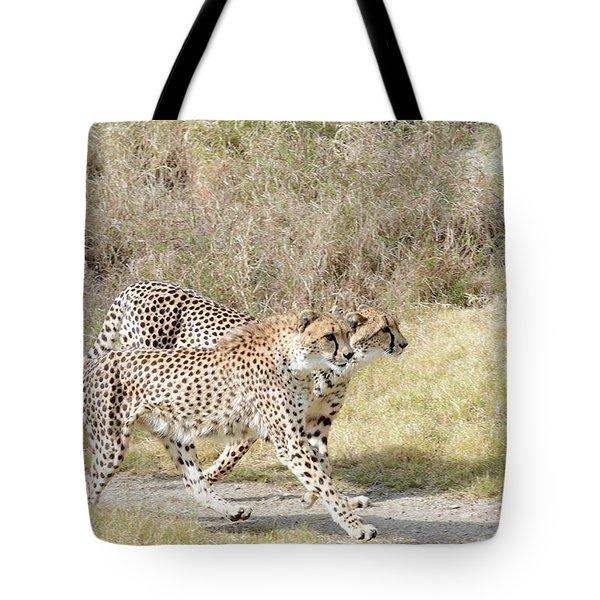 Tote Bag featuring the photograph Cheetah Trot 2 by Fraida Gutovich