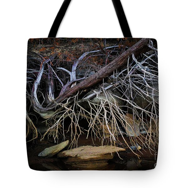 Tote Bag featuring the photograph Cherokee Lake Abstract by Douglas Stucky