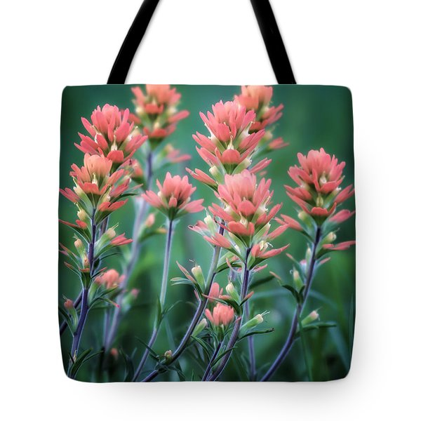 Cherokee Prairie Paintbrush Tote Bag