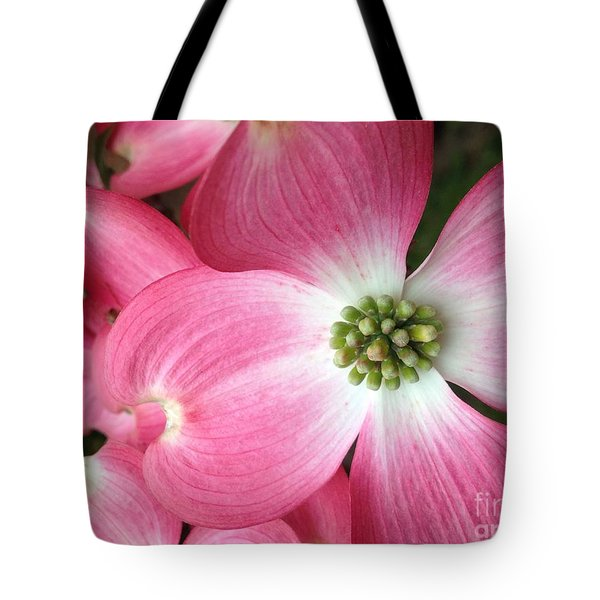 Cherokee Red Dogwood Tote Bag