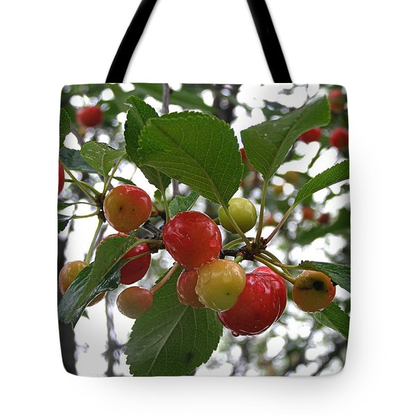 Tote Bag featuring the photograph Cherries In The Morning Rain by Angie Rea