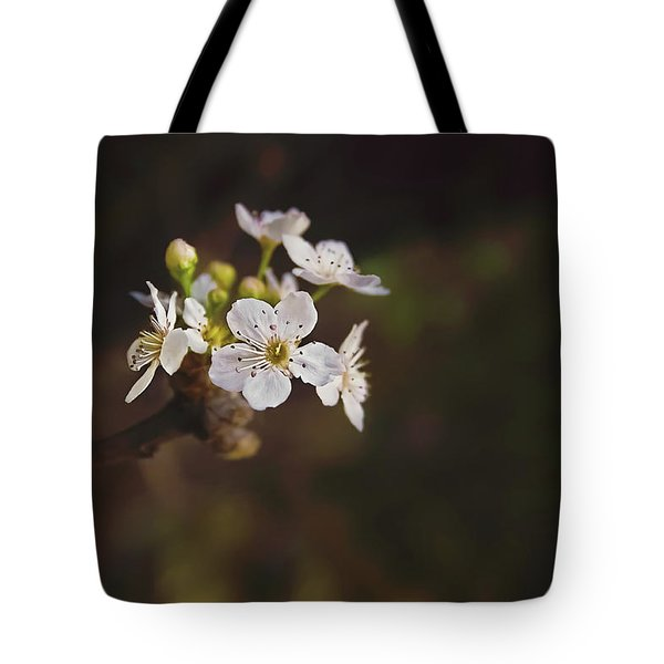 Tote Bag featuring the photograph Cherry Blossom by April Reppucci
