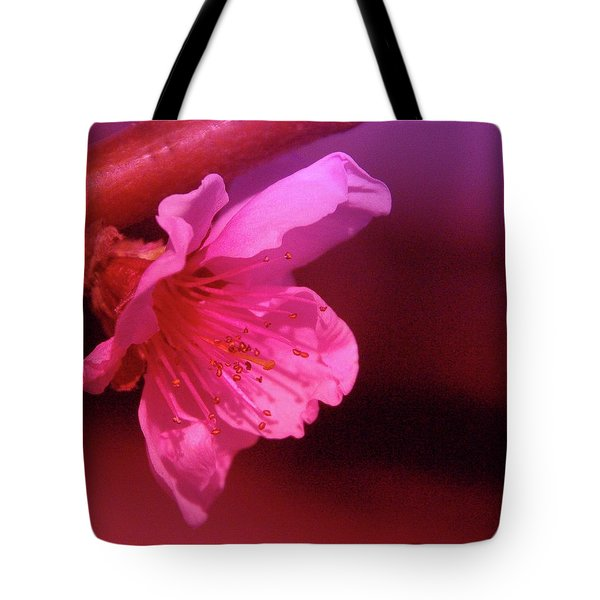 Cherry Blossom Tote Bag by Jeff Swan