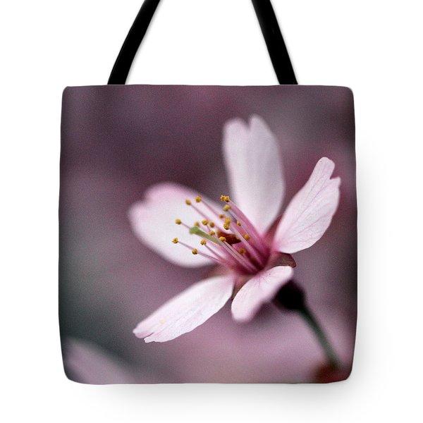 Cherry Blossom Tote Bag by Joseph Skompski