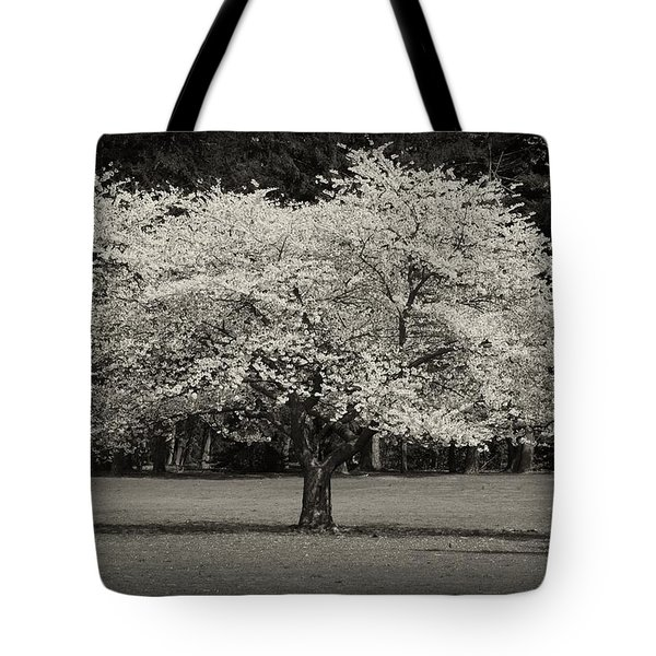 Cherry Blossom Tree - Ocean County Park Tote Bag