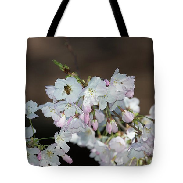 Cherry Blossoms Tote Bag by Glenn Franco Simmons