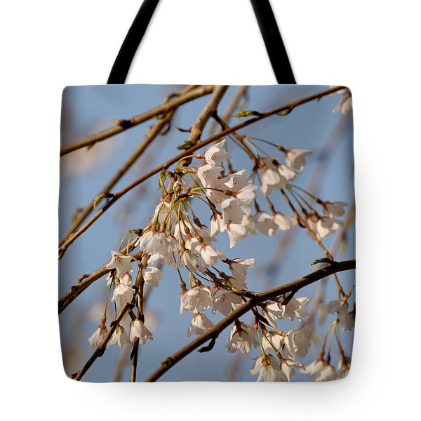 Cherry Blossoms Tote Bag by Julie Niemela