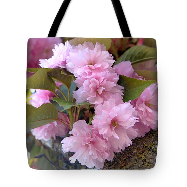 Cherry Blossoms Nbr2 Tote Bag