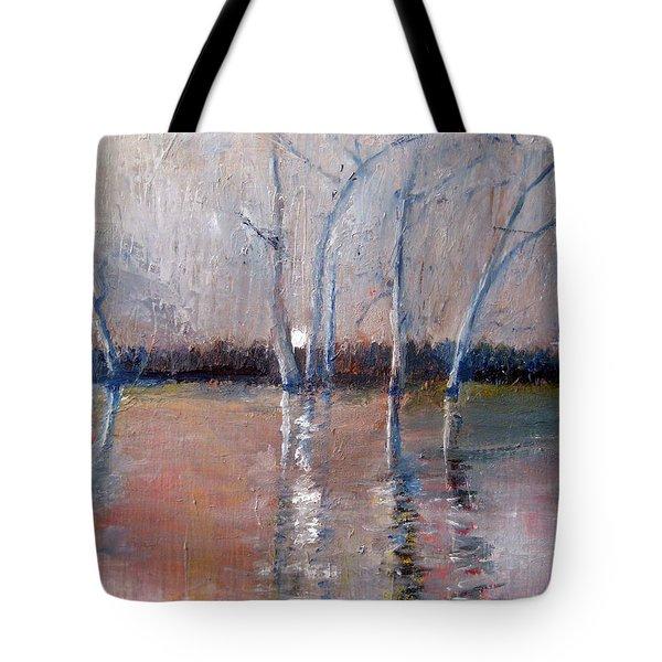 Cherry Creek Evening Tote Bag
