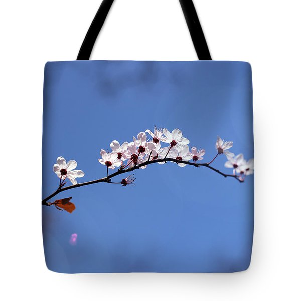 Tote Bag featuring the photograph Cherry Flowers With Lens Flare by Helga Novelli