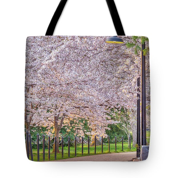 Cherry Morning Path Tote Bag
