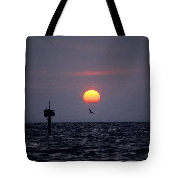 Tote Bag featuring the photograph Chesapeake Bay Osprey 14o by Gerry Gantt