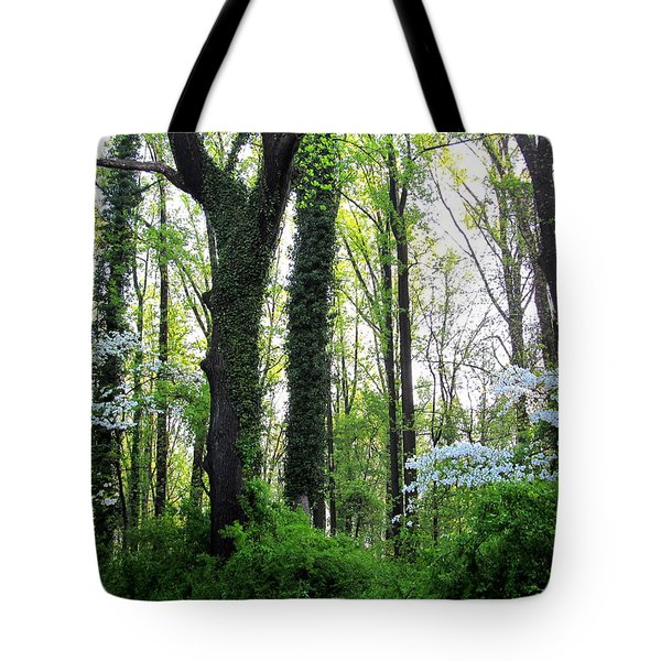 Chesapeake Oldgrowth Forest Tote Bag