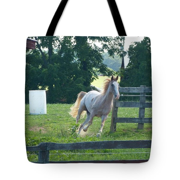 Chester On The Run Tote Bag by Donald C Morgan