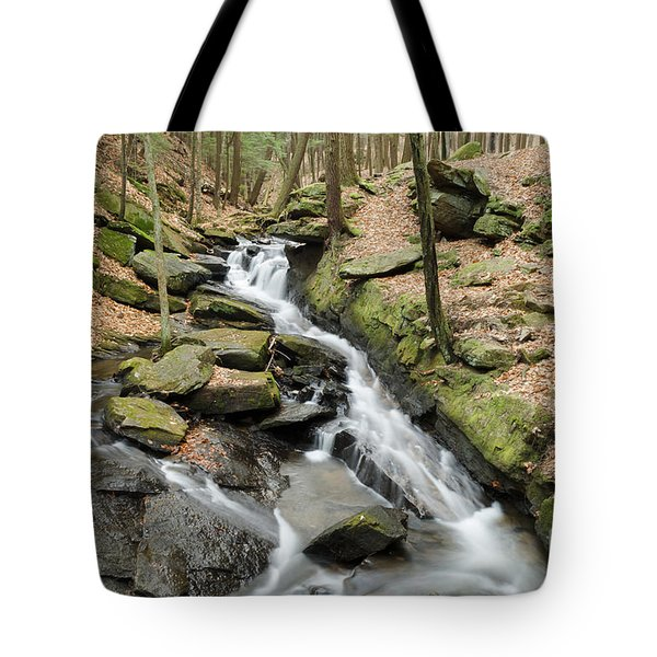 Chesterfield Gorge State Park Tote Bag