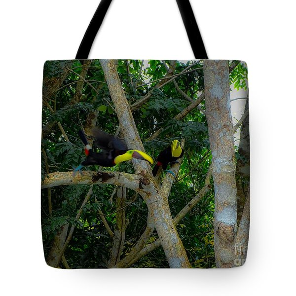 Chestnut-mandibled Toucans Tote Bag